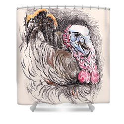Shower Curtain featuring the drawing Turkey Tom by MM Anderson