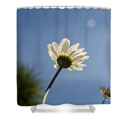 Turn To The Light Shower Curtain