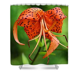 Shower Curtain featuring the photograph Turn Up The Heat by Michiale Schneider