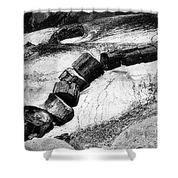 Shower Curtain featuring the photograph Turned To Stone by Paul W Faust - Impressions of Light