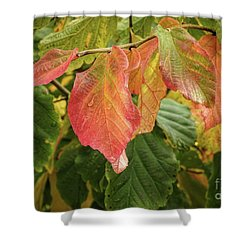 Shower Curtain featuring the photograph Turning by Peggy Hughes