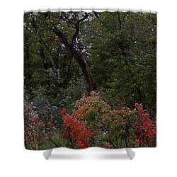 Shower Curtain featuring the digital art Turning by Stuart Turnbull