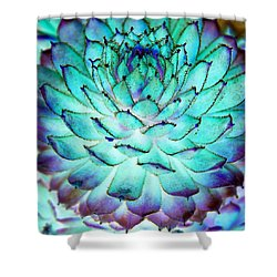 Turquoise Succulent 1 Shower Curtain by Marianne Dow
