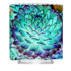 Shower Curtain featuring the photograph Turquoise Succulent 2 by Marianne Dow