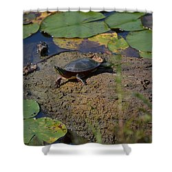 Turtle And Lily's Shower Curtain