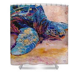 Turtle At Poipu Beach 6 Shower Curtain by Marionette Taboniar