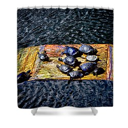 Shower Curtain featuring the photograph Turtle Boat A by Joseph Hollingsworth