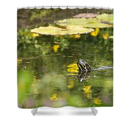 Shower Curtain featuring the photograph Turtle  by Julie Andel
