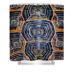 Turtle Madness Shower Curtain by Mariola Bitner