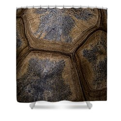 Turtle Shell Shower Curtain by Racheal  Christian