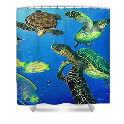 Turtle Towne Shower Curtain by Angie Hamlin