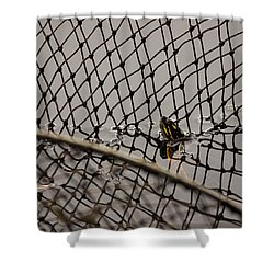 Turtle Trap Shower Curtain
