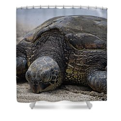 Shower Curtain featuring the photograph Turtle Up Close by Pamela Walton