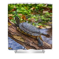 Turtle Yoga Shower Curtain