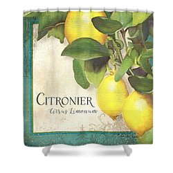 Tuscan Lemon Tree - Citronier Citrus Limonum Vintage Style Shower Curtain