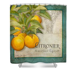 Tuscan Orange Tree - Citronier Aurantiaco Lignum Vintage Shower Curtain