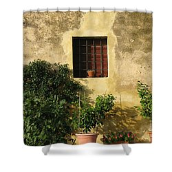 Tuscan Window Shower Curtain