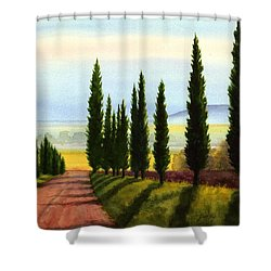 Tuscany Cypress Trees Shower Curtain