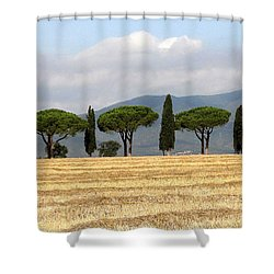 Tuscany Trees Shower Curtain