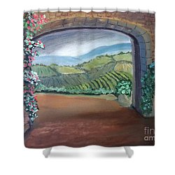 Tuscany Vineyards Through The Archway Shower Curtain
