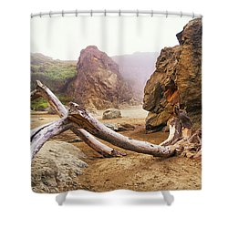 Tusk West Coast Image Art Shower Curtain