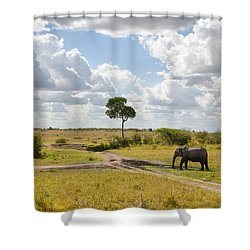 Tusker Scape Shower Curtain