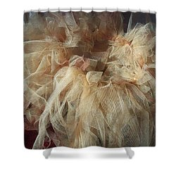 Shower Curtain featuring the painting Tutu by Judith Desrosiers