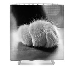 Tuxedo Cat Paw Black And White Shower Curtain