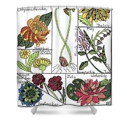 Twelve Month Flower Box Shower Curtain