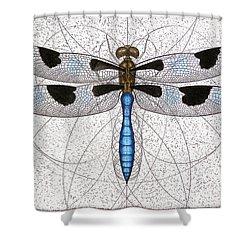 Twelve Spotted Skimmer Shower Curtain