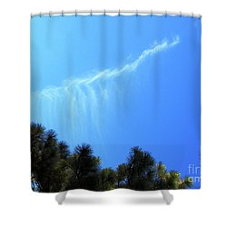 Twenty Four Elders				 Shower Curtain