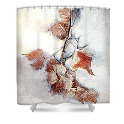 Shower Curtain featuring the photograph Twigged by Pennie  McCracken