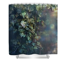 Twilight And Shadow Shower Curtain