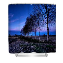 Twilight And Trees Shower Curtain