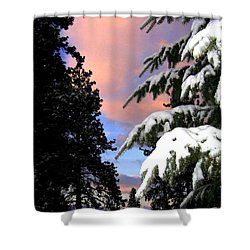Twilight Hour Shower Curtain by Will Borden