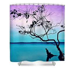 Twilight Musings Shower Curtain