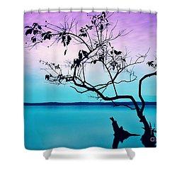 Twilight Musings Shower Curtain by Kelly Nowak