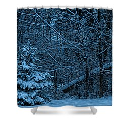 Twilight Snow Shower Curtain