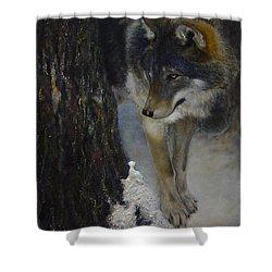 Twilight's Preyer  Shower Curtain