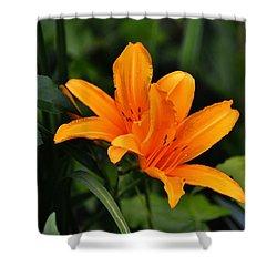 Twin Lillies Shower Curtain