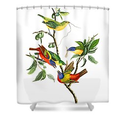 Shower Curtain featuring the photograph Twin by Munir Alawi