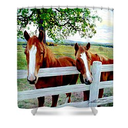 Twin Ponies Shower Curtain