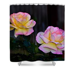 Twin Roses Shower Curtain