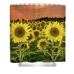 Shower Curtain featuring the photograph Peaceful Opposition by Bill Pevlor