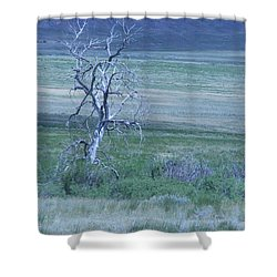 Twisted And Free Shower Curtain