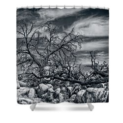 Twisted Branches Shower Curtain