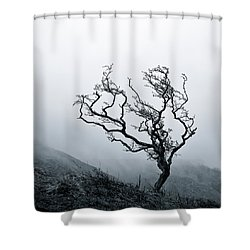 Twisted Shower Curtain by Dave Bowman