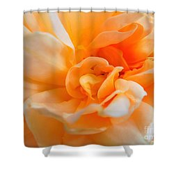 Twisted Dreamsicle Shower Curtain