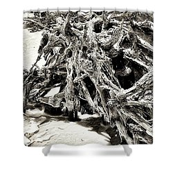 Twisted Driftwood Shower Curtain