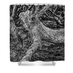 Twisted Shower Curtain by Mark Lucey